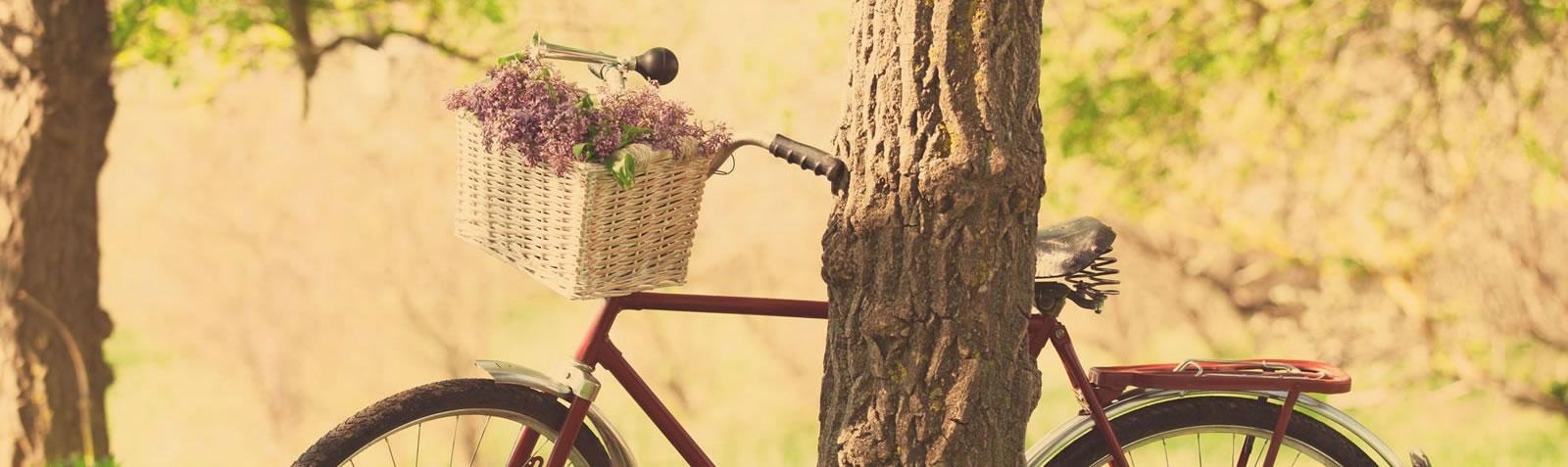Adria Bike Hotels